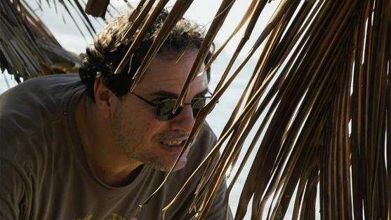 Carlos Cuarón Director